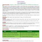 Curriculum Insight  Sr. Kg. – September 2018